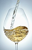 Pouring white wine into a glass