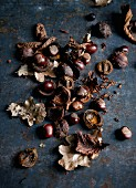 Chestnuts with autumn leaves