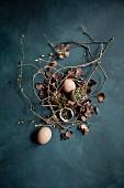 Gewürzmischung aus Wacholder, Fichtenspitzen und Salzflocken in Eierschalen