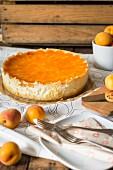 Mandarin cream cake