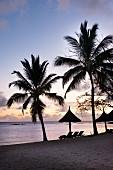 Abenddämmerung an Sandstrand mit Palmen und Sonnenliegen