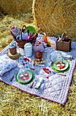 Picnic on blanket on straw amongst round bales of straw