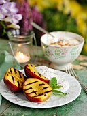 Grilled nectarines with yogurt cream