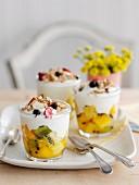 Dessert mit exotischen Früchten, Joghurt und Granola
