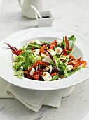 A mixed leaf salad with goat's cheese, peppers and pine nuts