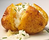 Baked Potato mit Hüttenkäse und Schnittlauch