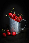 Still Life of Cherries
