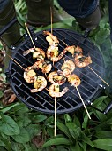 Prawn skewers on a barbecue