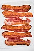 Fried slices of bacon on kitchen roll (seen from above)