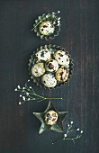 Quail eggs in metal molds and dried flowers for Easter holiday over dark scorched wooden background