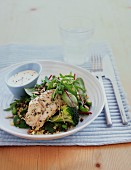 Chicken breast on a quinoa salad with mixed leaves and vegetables