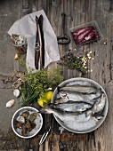 Eel, oysters, cod and trouts with herbs and lemons on a wooden background