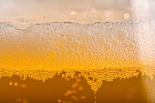Extreme close-up of a beer glass
