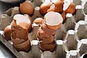 Nahaufnahme von Eierschalen in Eierkarton
