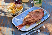 Grilled dorade with a fennel and orange salad