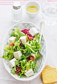 Salad with fresh cheese
