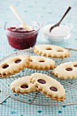 Lunettes de Romans (jam biscuits, France)