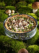 A mushroom tart in a spring form tin on a mossy forest floor
