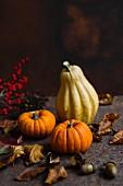 Decorative pumpkins and autumn leaves