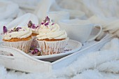 Vanilla cupcakes with dried rose petals on a white tray