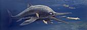Leptonectes ichthyosaur hunting squid, illustration