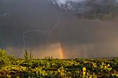 Lightning strike and rainbow, Arizona, USA