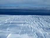 Edge of Pine Island Glacier, Antarctica, October 2014