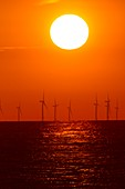 Offshore wind turbines at sunset