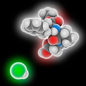 Benazepril hydrochloride drug molecule