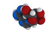 Adenosine purine nucleoside molecule