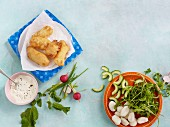 Fried fish with ingredients for gnocchi and radish salad with cucumber