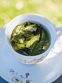 A cup of melissa tea on a table outdoors