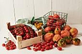 Stillleben mit verschiedenen Tomatensorten