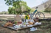 Sommerliche Picknickszene auf dem Lande mit Fahrrad, Speisen und Getränken