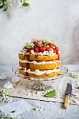 A multi-layer strawberry cream cake with meringue