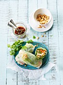 Summer rolls filled with vegetables and a plum dip (Asia)