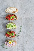 Various types of bruschetta