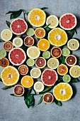 Various halved citrus fruits