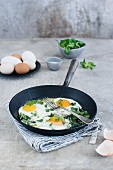 Fried eggs with parsley in a pan