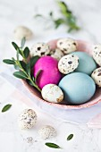 Quails eggs and coloured Easter eggs in a bowl
