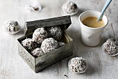 Chocolate and coconut balls with cream cheese and avocado