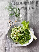 Cucumber salad with mustard and dill dressing