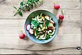 Radish and cucumber salad with mint