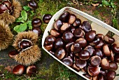 Chestnuts in a wooden basket