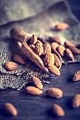 An arrangement of almonds on a wooden scoop