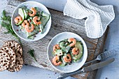 Cucumber and avocado salad with shrimps