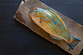 A fresh parrot fish on a wooden board