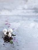 Pilze auf grauem Untergrund