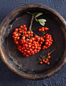 Rowan berries in a wooden bowl