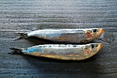 Two sardines on a grey wooden background